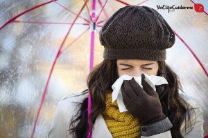 16---Resfriado-3-800x534