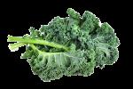 La kale es un superalimento con mucho hierro y proteína