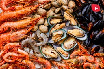 ¿Comer marisco sube el colesterol? ¡Descubre la verdad!