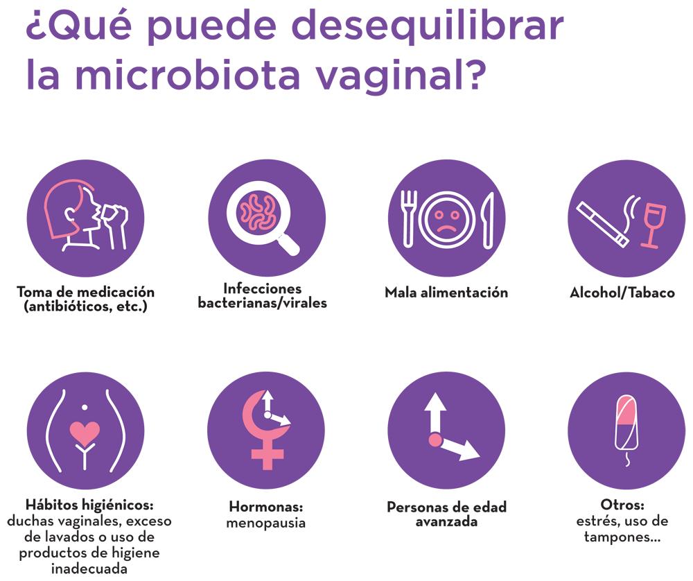 Microbiota vaginal, ¿qué es, qué función cumple y cómo equilibrarla?